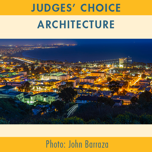 2019-Photo-Contest-WEBSITE-JudgesChoice-ARCHITECTURE