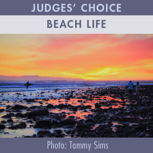 2019-Photo-Contest-WEBSITE-JudgesChoice-BEACHLIFE