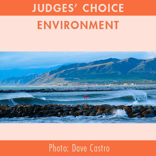 2019-Photo-Contest-WEBSITE-JudgesChoice-ENVIRONMENT1